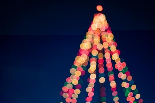 Lighting the Christmas Tree