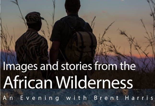 Images and stories from the African wilderness